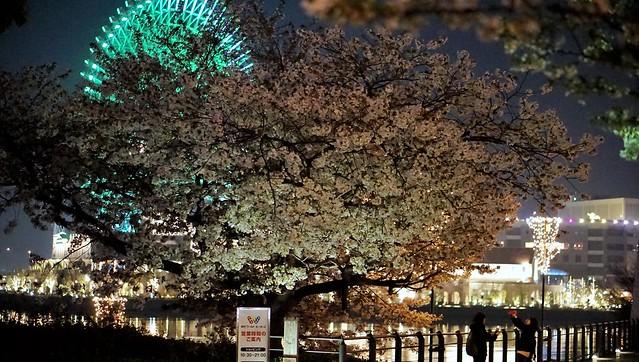 DSC07749-01みなとみらい夜景散歩