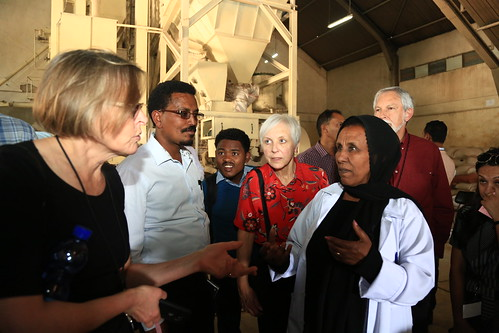 Participants visit Kaliti animal feed processing plant