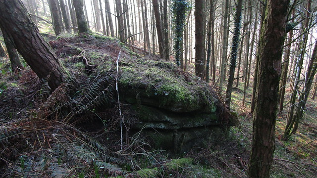 Blackingstone Eastern Outcrops