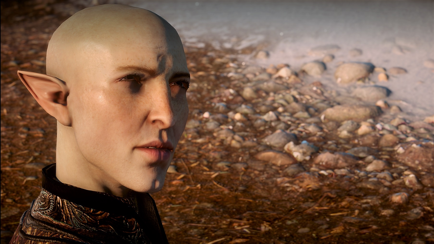 "Screenshot from Dragon Age Inquisition for Chapter 25 of ""The Half-Life of Element Zero."""
