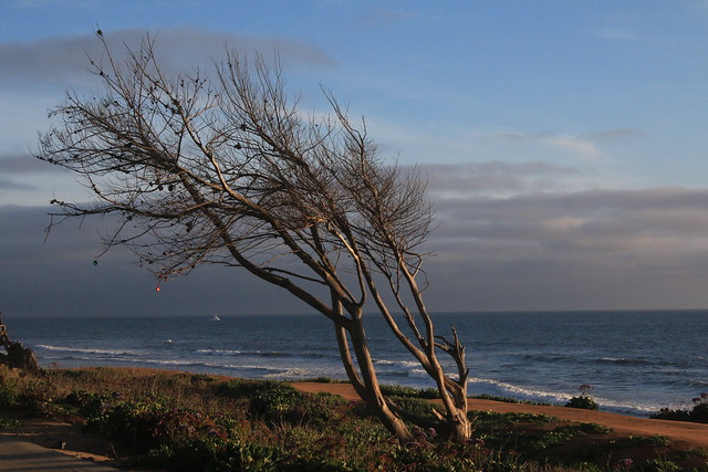 Carlsbad Coast, Canon EOS 70D, Canon EF-S 18-55mm f/3.5-5.6 IS