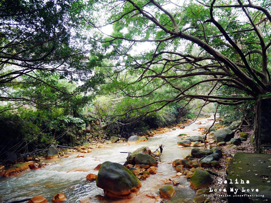 台北士林區天母一日遊行程推薦天母公園 (26)