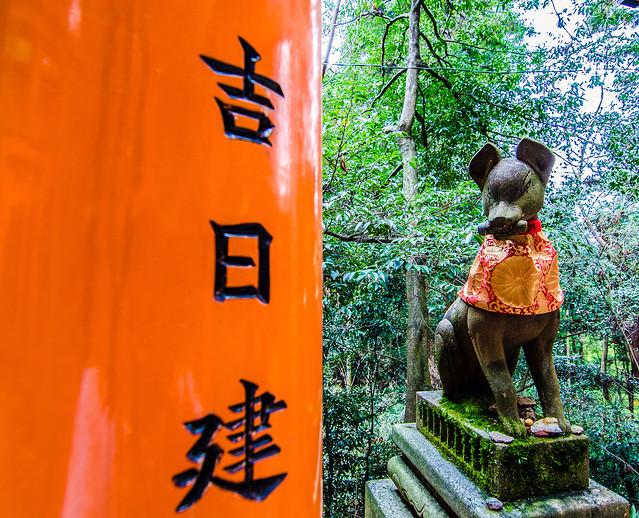 Fushimi Inari dog