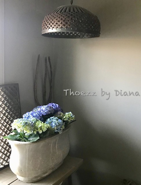 Vaas met hortensia's, landelijk sober