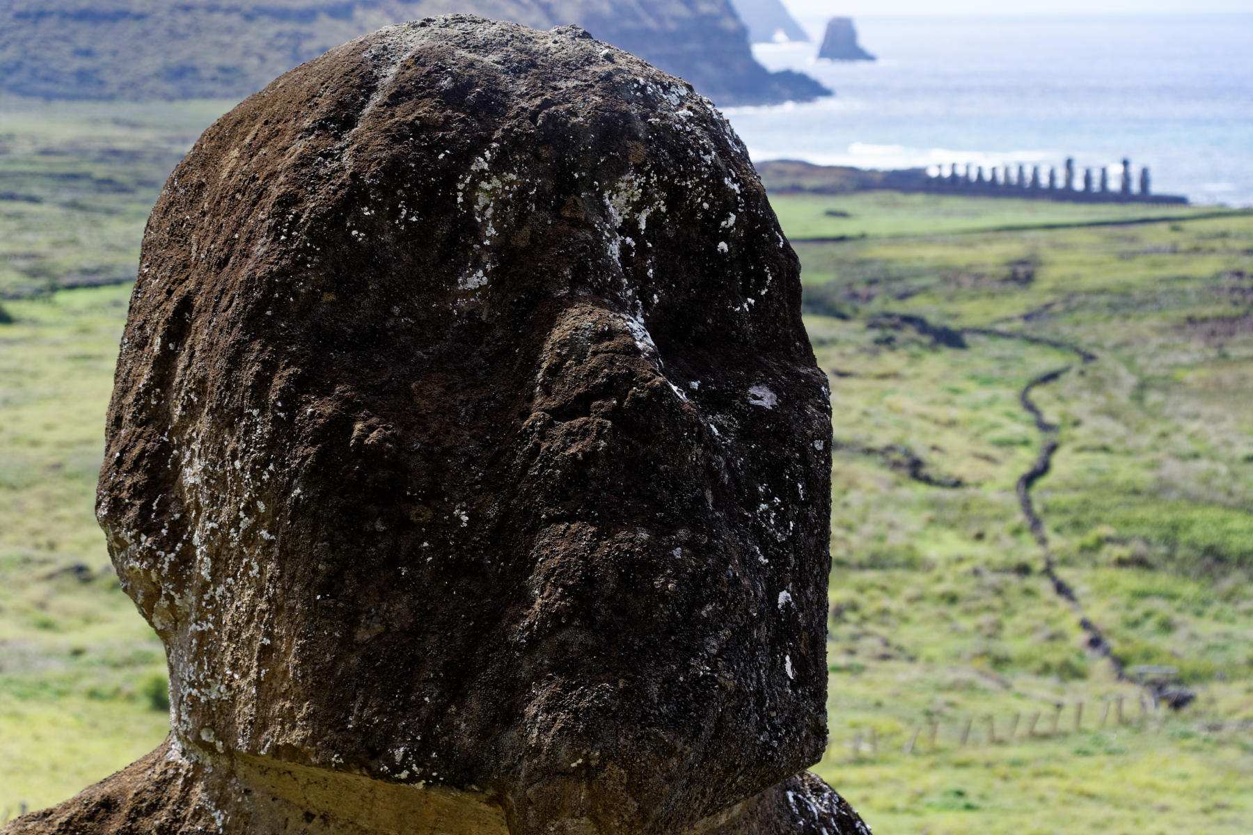 The face of Tukuturi, the kneeling moai