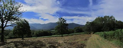 20120925 27 095 Jakobus Feld Wald Wiese Wolken Baum_P01