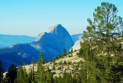 Half Dome from Olmsted Point, Yosemite 2016