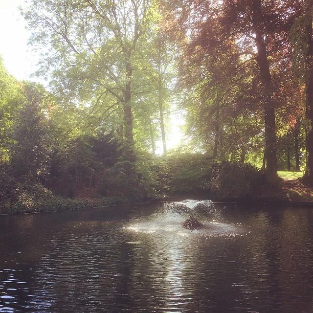 Kleine fontein in het park