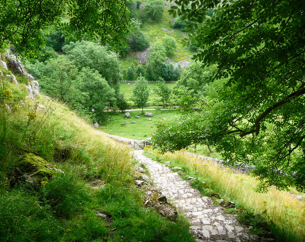 Public footpath near Malham in the Yorkshire Dales. Credit Immanuel Giel