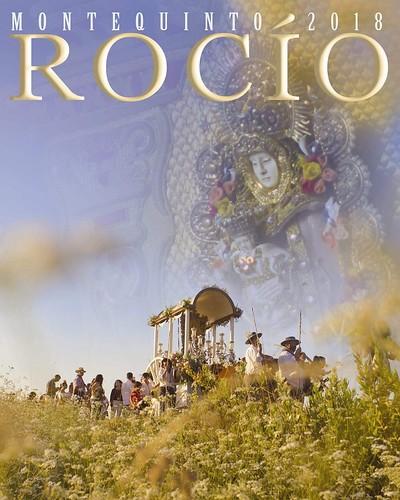 Cartel de la Hermandad del Rocío de Montequinto