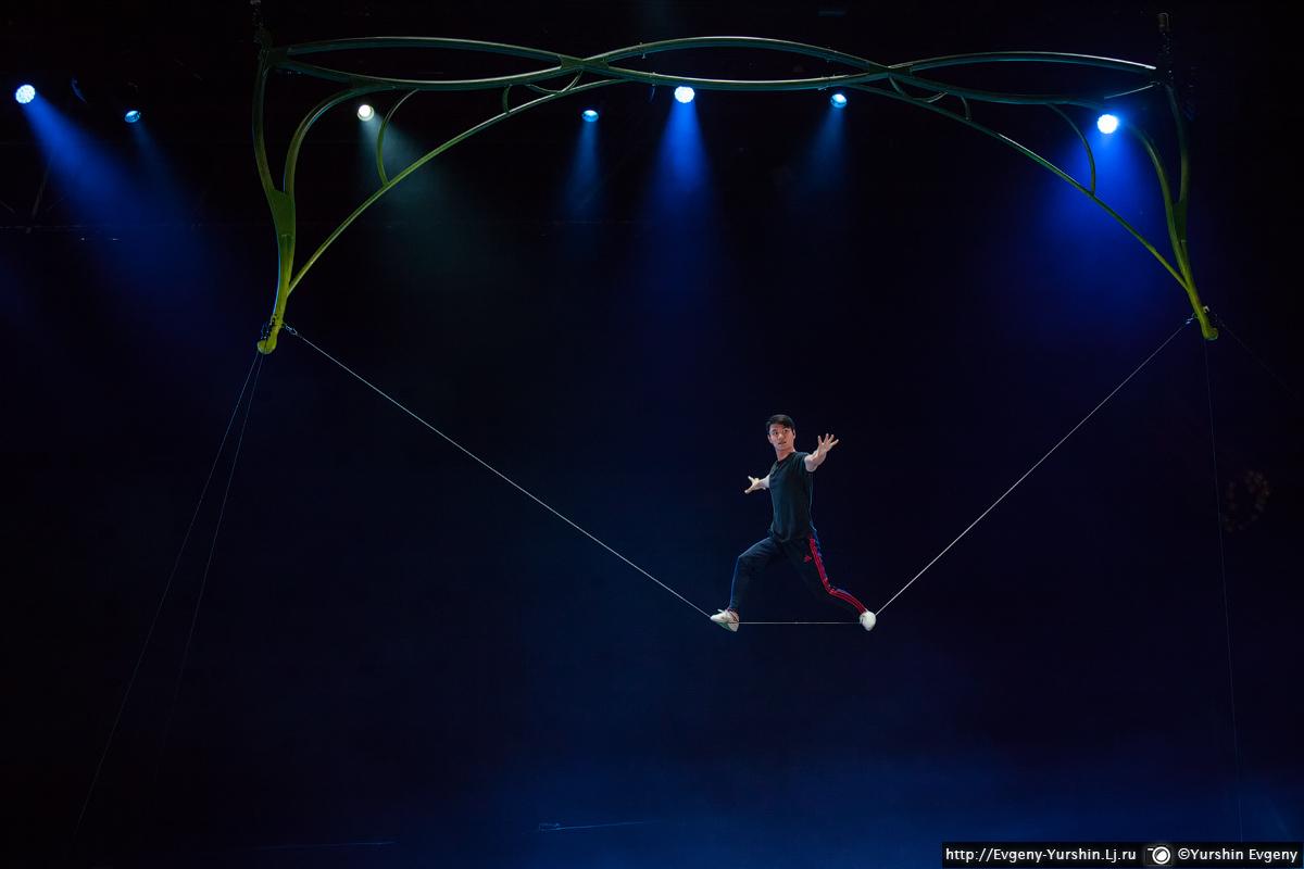 Cirque du Soleil. OVO secrets