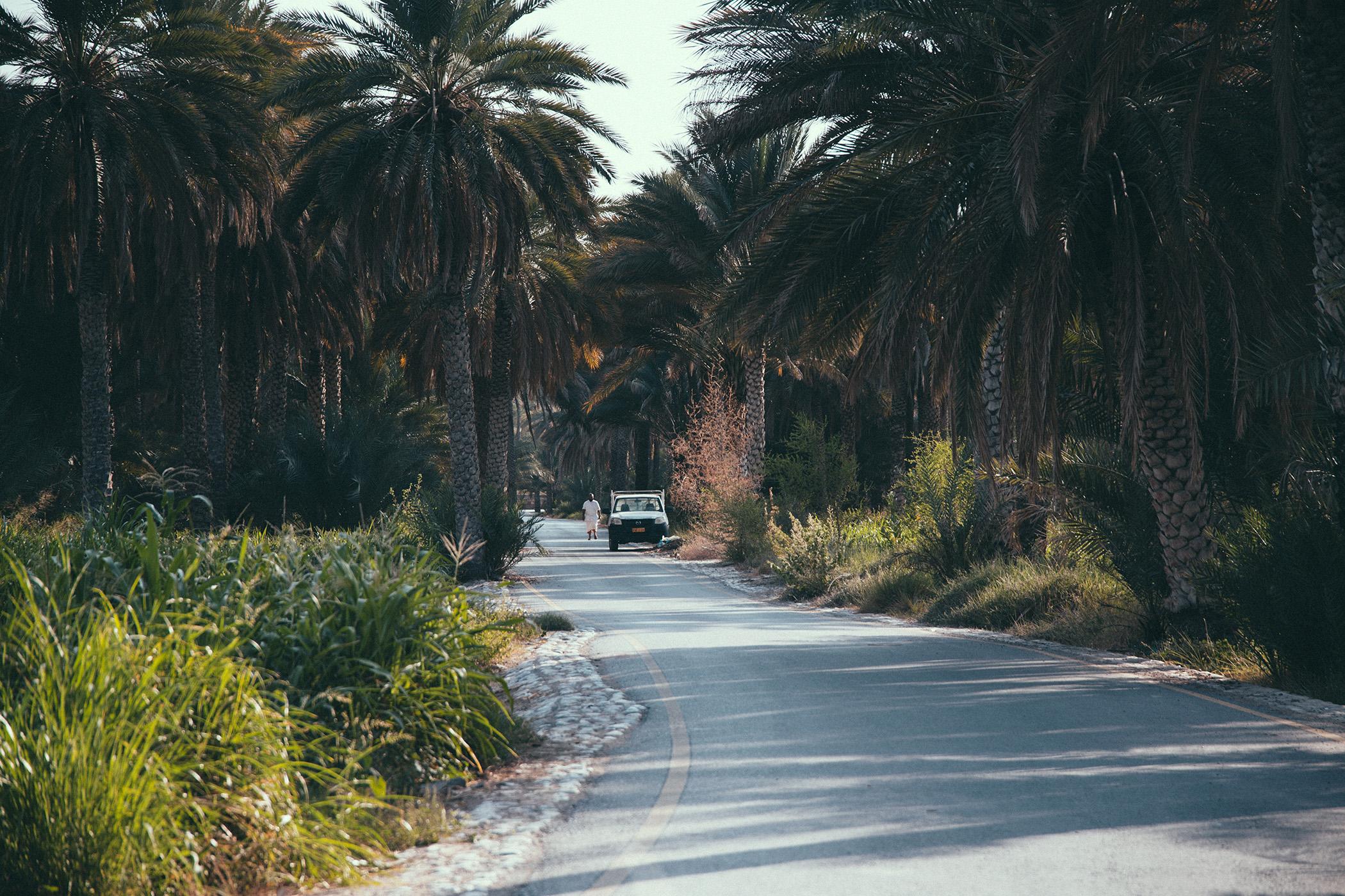 Birkat Al Mouz, Oman