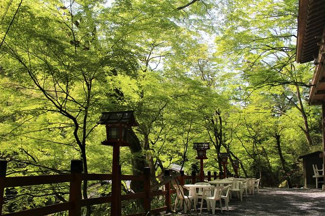 kifune-syaden039
