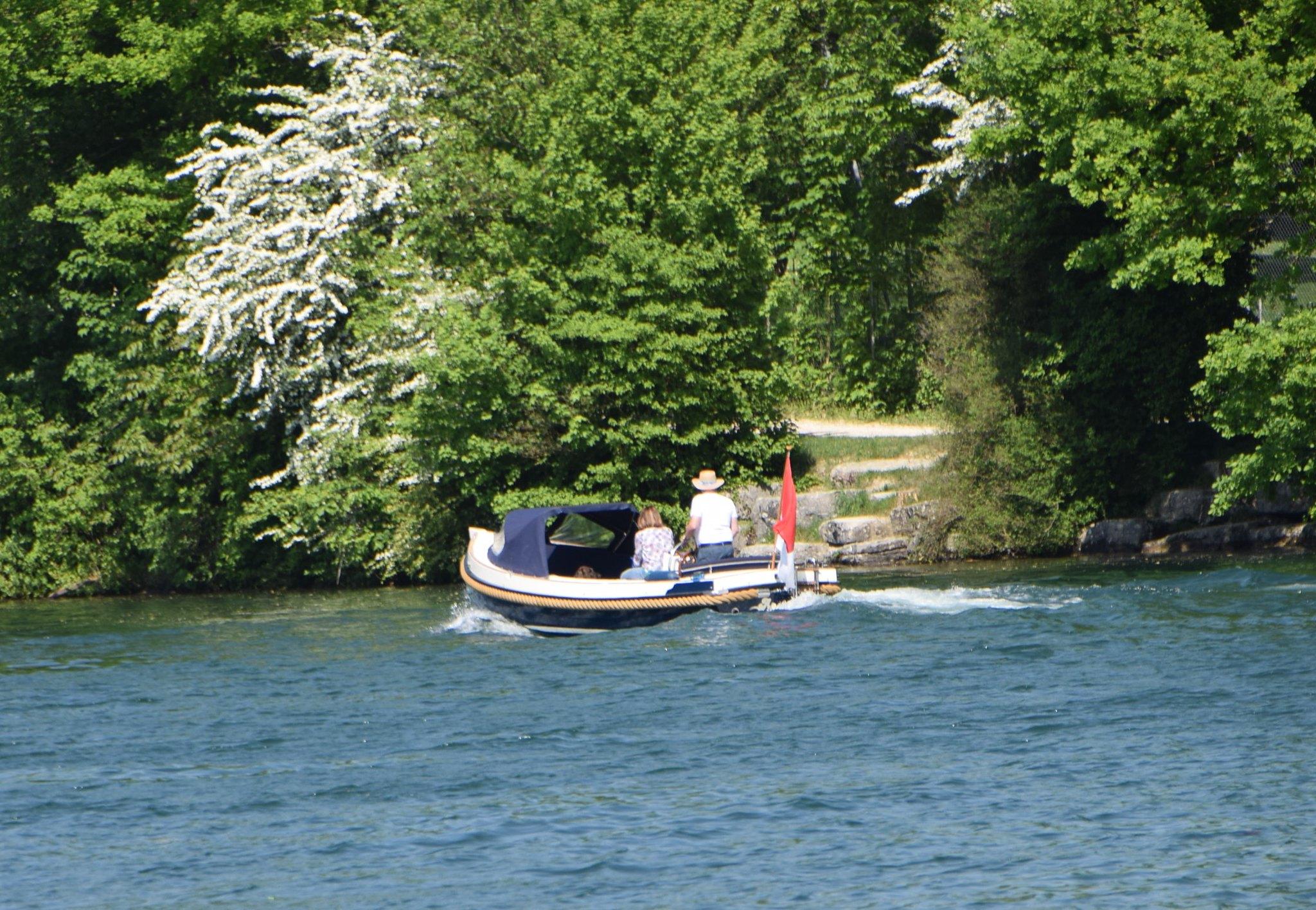 River Aare 06.05 (7)