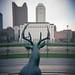 Genoa Park Deer Sculpture - Holga 120 GCFN by bizzano