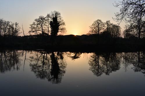 water tree sky landscape scenery silhouette serene sunrise river dart totnes devon uk
