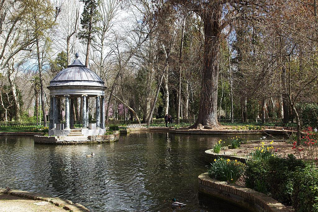 Estanque con templete y muchos narcisos en los Jardines del Príncipe en Aranjuez