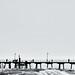 Glenelg pier