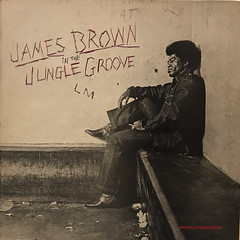 JAMES BROWN:IN THE JUNGLE GROOVE(JACKET A)