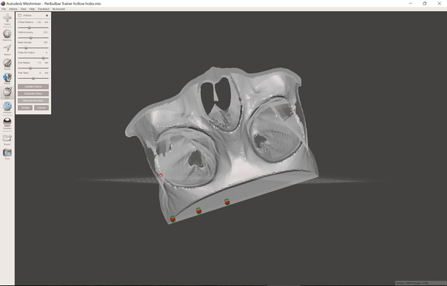 Skull and orbit model being manipulated in Autodesk Meshmixer software.