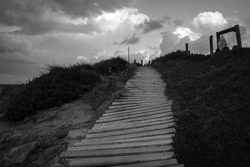 coast path  #0345