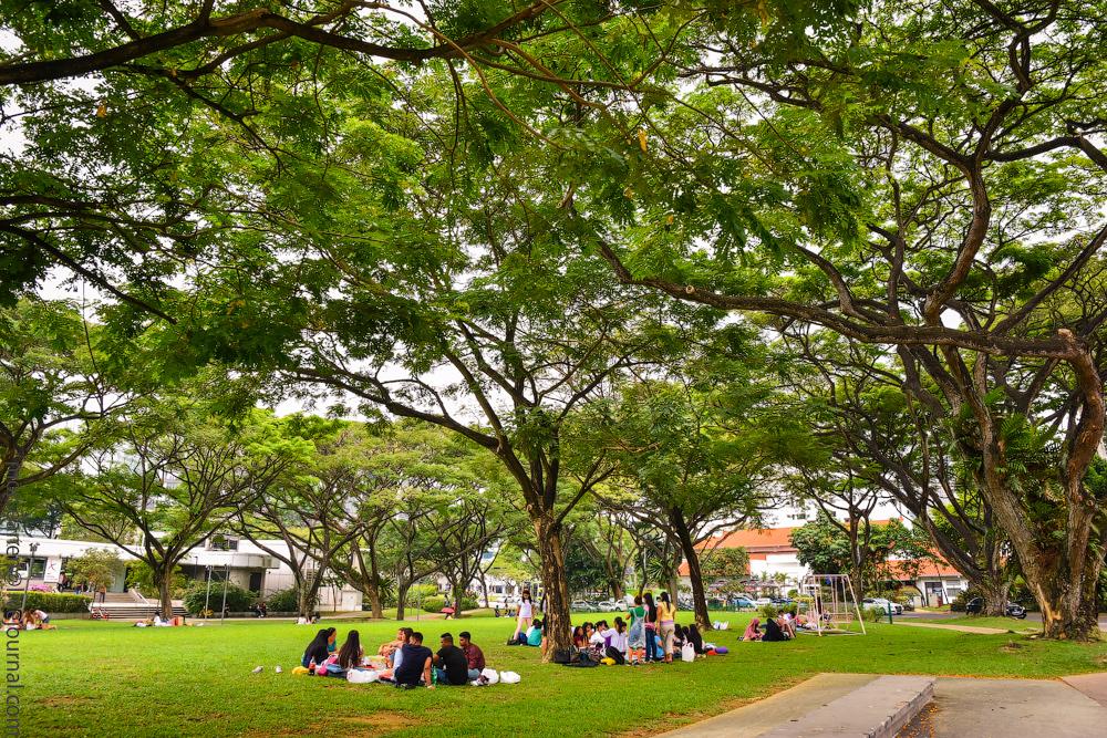 singapore-dubai-(6)