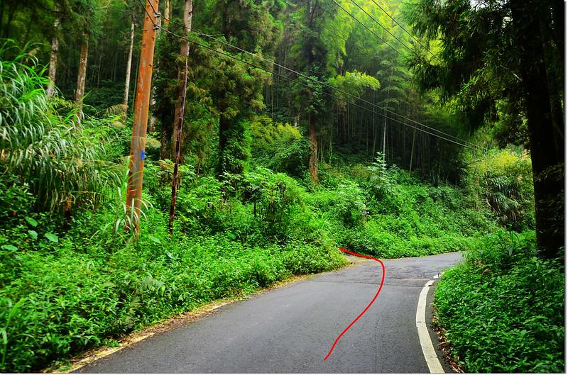 雙林山行車岔路