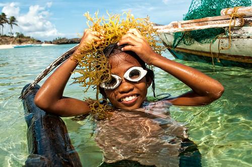 Seaweeds Farmer