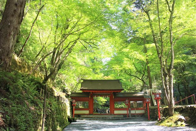 kifune-oku016