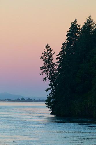 lewisandclark columbiariver lewisandclarknationalwildliferefuge pinetree sunrise landscape sunset water astoria orskamokawawashingtonunitedstatesus