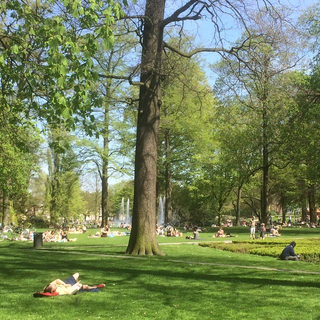 Park - De Boeklezer en De Denker