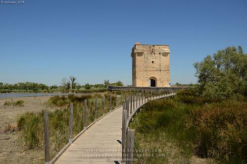 Tour Carbonnière (Languedoc Roussillon)