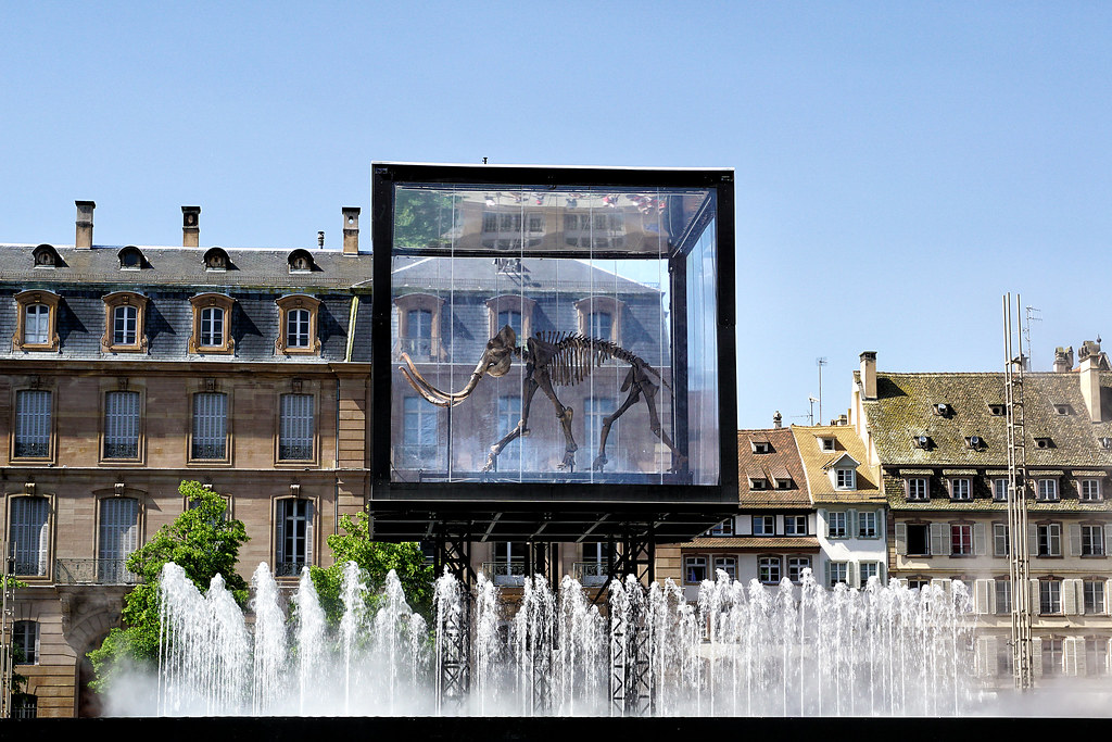 L'Industrie Magnifique - Mammuthus Volantes