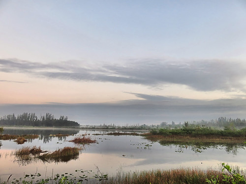 Fog on lake after sunrise 04-20180409