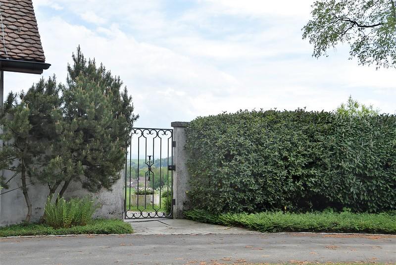 Feldbrunnen 29.04 (8)