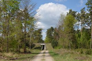 Fläming Rundwanderweg 71