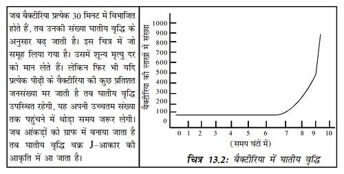 चित्र 13.2 बैक्टीरिया में घातीय वृद्धि
