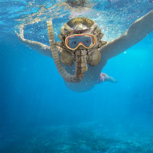 對不起,我可能不想跟你一起去海邊~ ThinkGeek 異形【抱臉體潛水面罩】Alien Facehugger Snorkel Mask 浮潛時的全場焦點!?