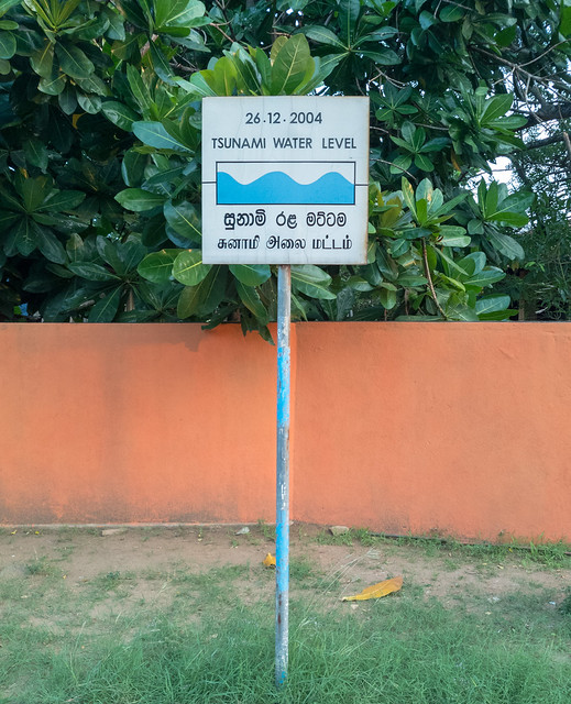 Tsunami Water Level