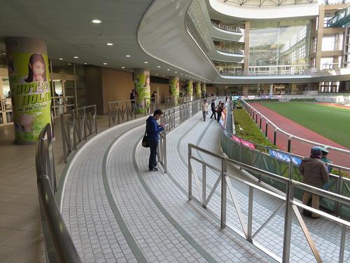 福島競馬場の2階にあるパドック