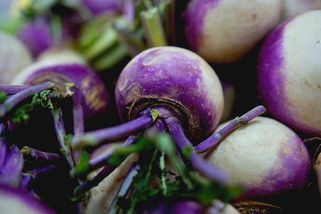 Turnip /  art