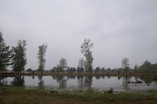 902 Kale Duinen - Aekingerzand