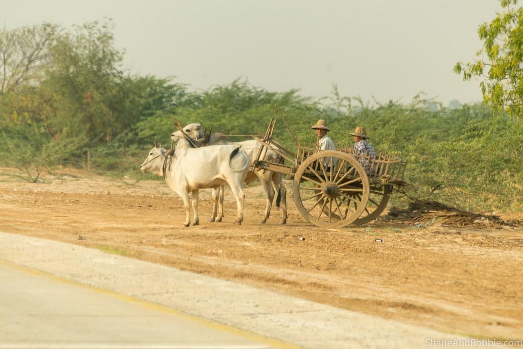 Myanmar-20180322-0702
