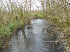 Licques la Hem (rivière) (1)