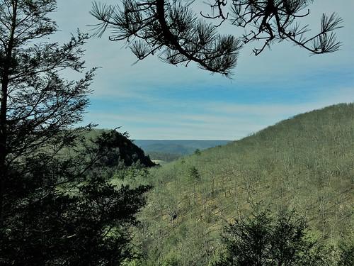 rockygapsp flinstone maryland mdstateparks mountains trees pines landscape iphone hss
