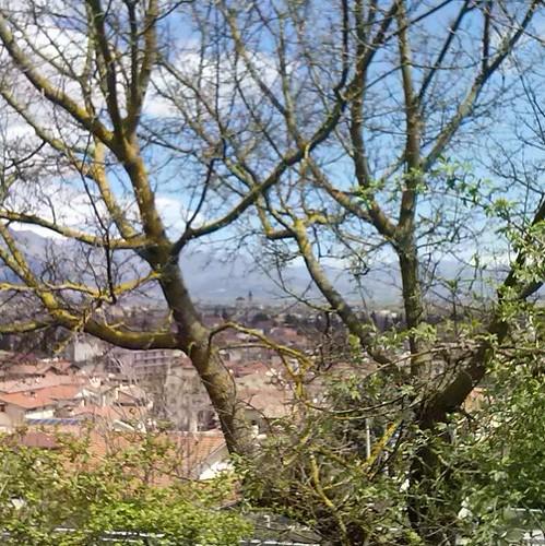 #Avezzano #cattedrale #sanbartolomeo #montesalviano