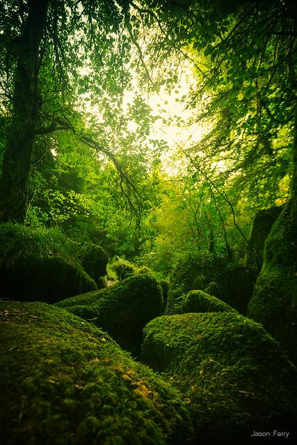 Bretagne 11 flickr