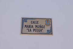 Calle Maria Munoz - La Pulga (The Flea)
