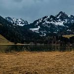 Lac noir au printemps