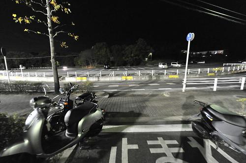 20111117-_DSC4891